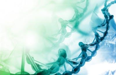 Terapia komórkami macierzystymi